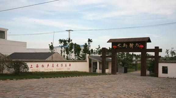 上海松声马术俱乐部_上海松声马术俱乐部